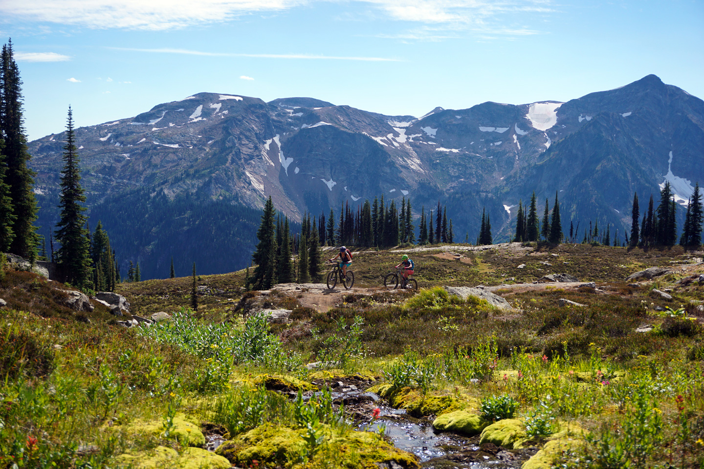 Classic views of the Monashees from the Caribou Pass trail. Photo by Lisa Ankeny